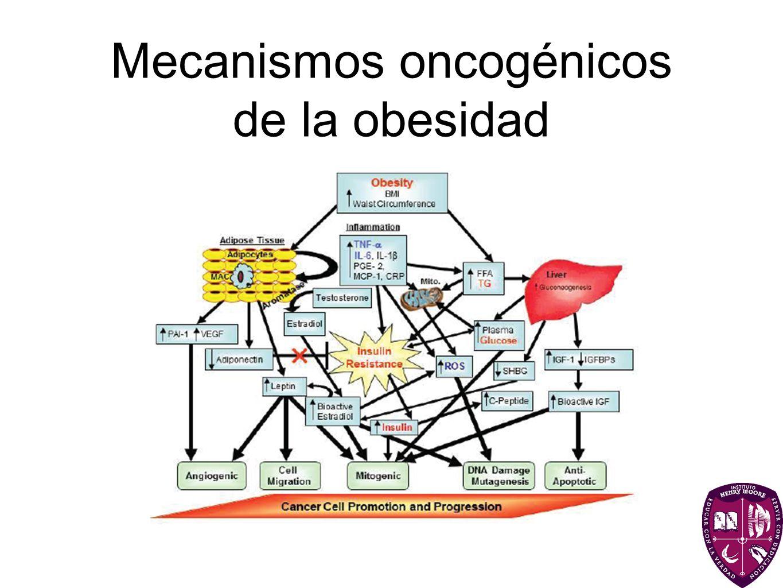 Mecanismos oncogénicos de la obesidad