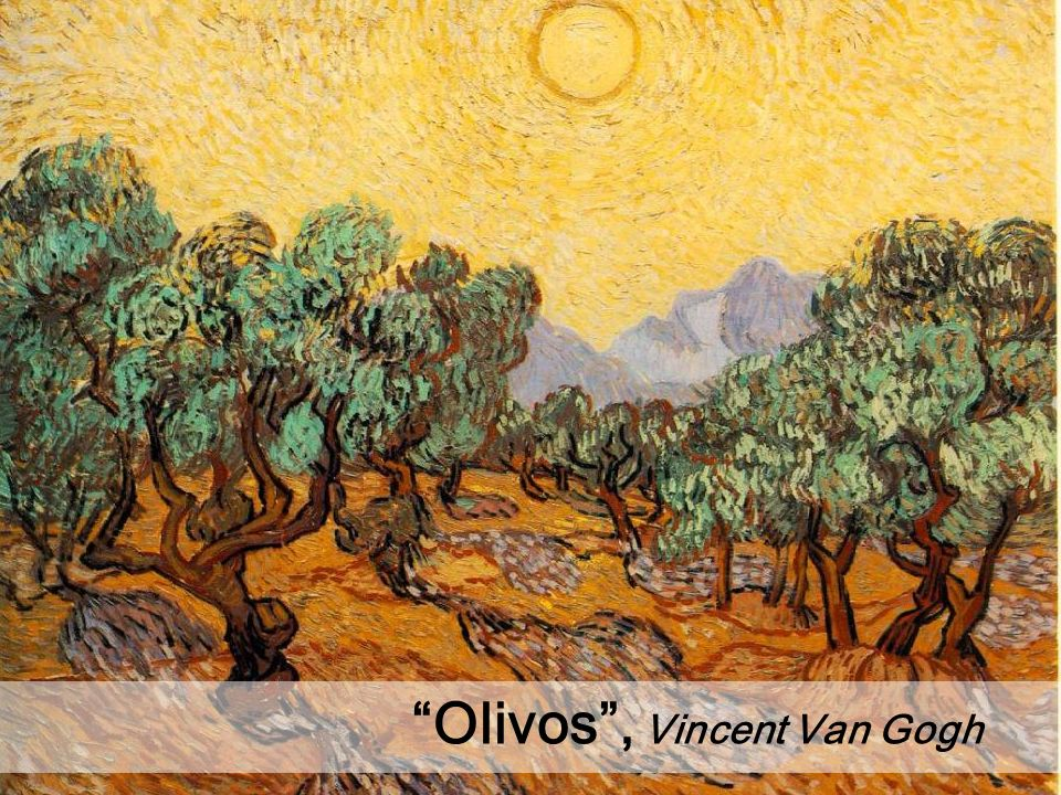 Olivos, Vincent Van Gogh