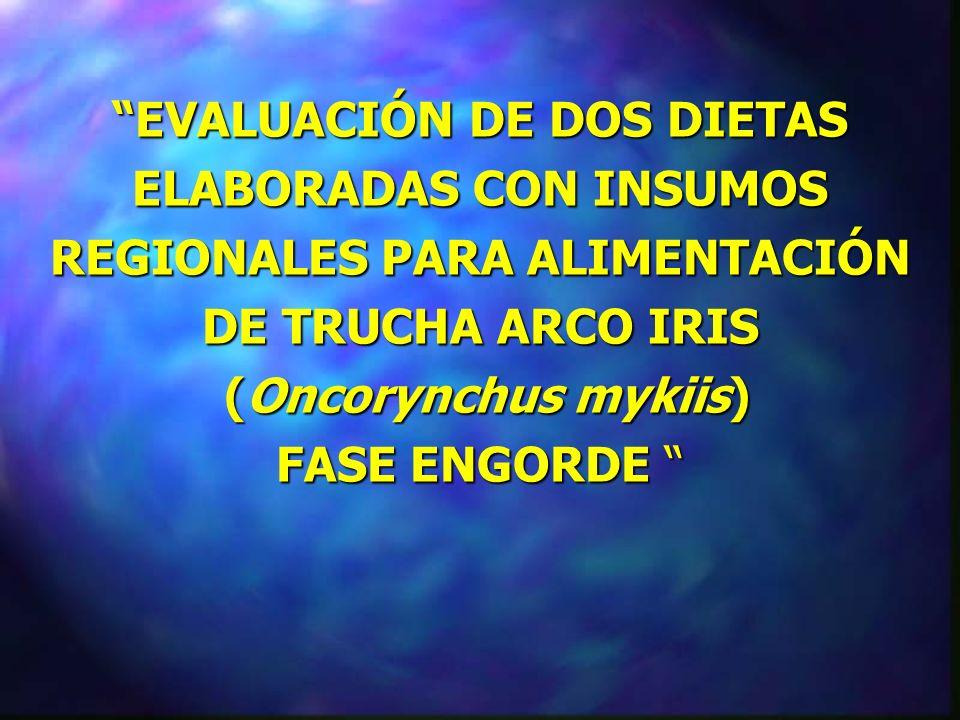 EVALUACIÓN DE DOS DIETAS ELABORADAS CON INSUMOS REGIONALES PARA ALIMENTACIÓN DE TRUCHA ARCO IRIS (Oncorynchus mykiis) FASE ENGORDE EVALUACIÓN DE DOS DIETAS ELABORADAS CON INSUMOS REGIONALES PARA ALIMENTACIÓN DE TRUCHA ARCO IRIS (Oncorynchus mykiis) FASE ENGORDE