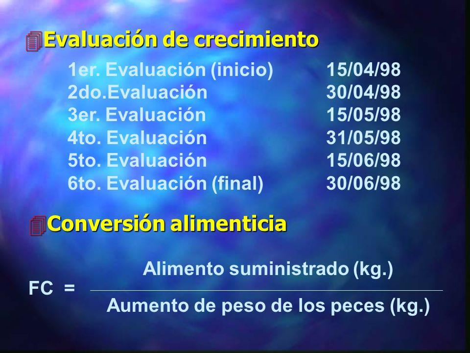 4Alimentación Cálculo de ración Porcentaje de peso corporal con que se debe alimentar FC = Factor de conversión L = Longitud (cm.) ( L / 15) = Increme