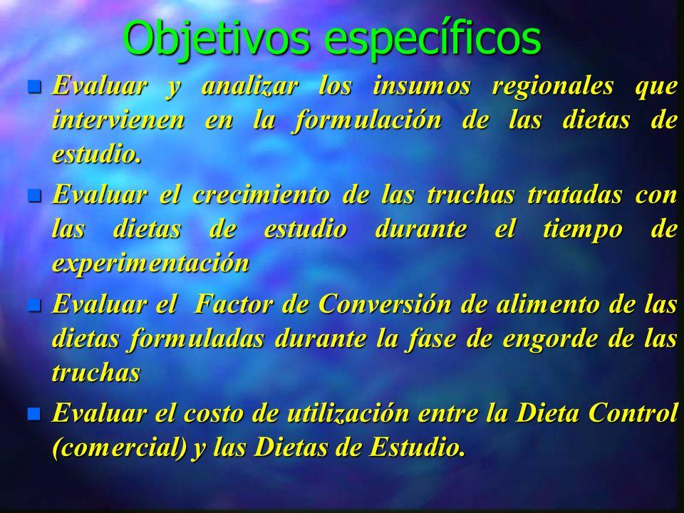 Objetivos específicos n Evaluar y analizar los insumos regionales que intervienen en la formulación de las dietas de estudio.