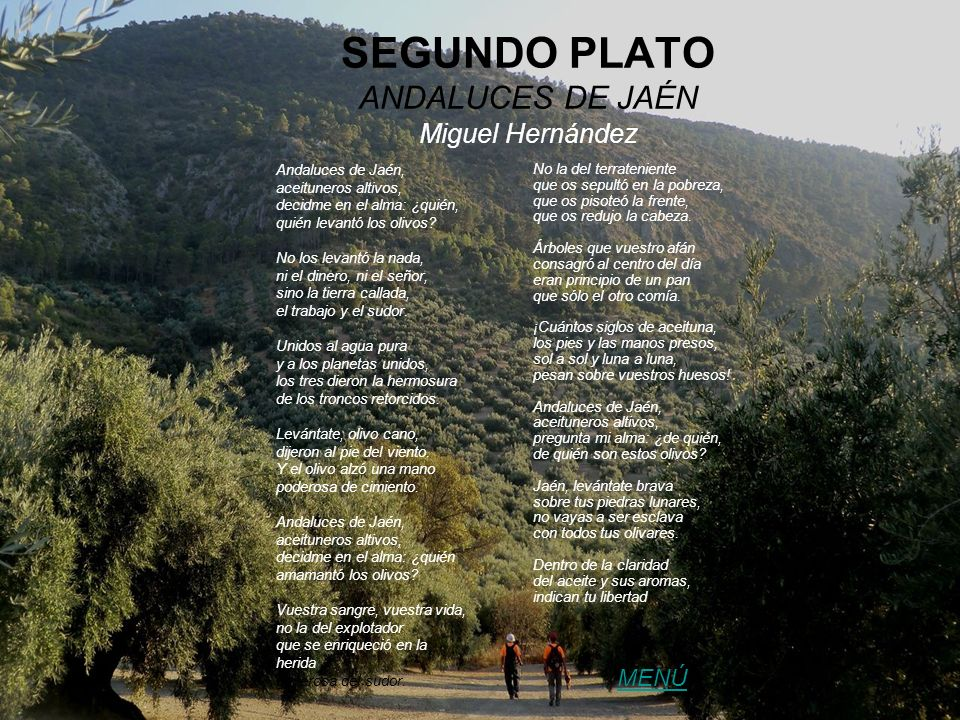 SEGUNDO PLATO ANDALUCES DE JAÉN Miguel Hernández Andaluces de Jaén, aceituneros altivos, decidme en el alma: ¿quién, quién levantó los olivos? No los
