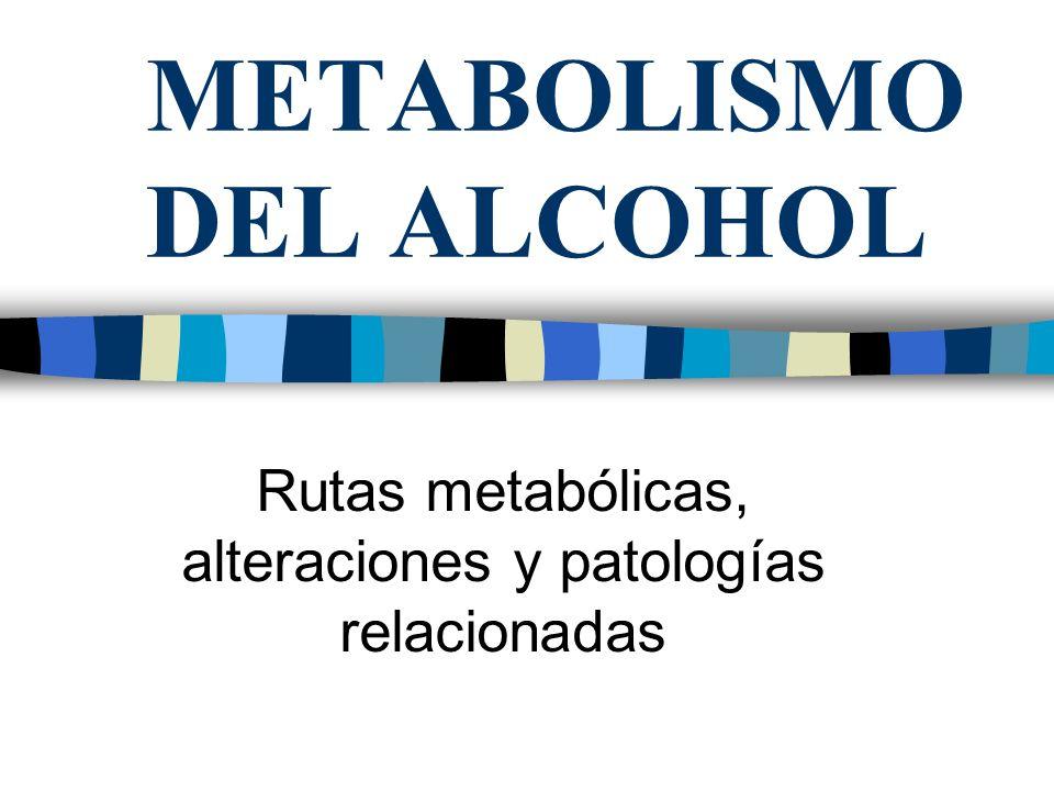 METABOLISMO DEL ALCOHOL Rutas metabólicas, alteraciones y patologías relacionadas