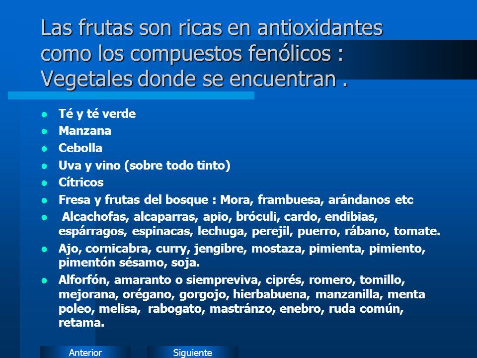 SiguienteAnterior Las frutas son ricas en antioxidantes como los compuestos fenólicos : Vegetales donde se encuentran.