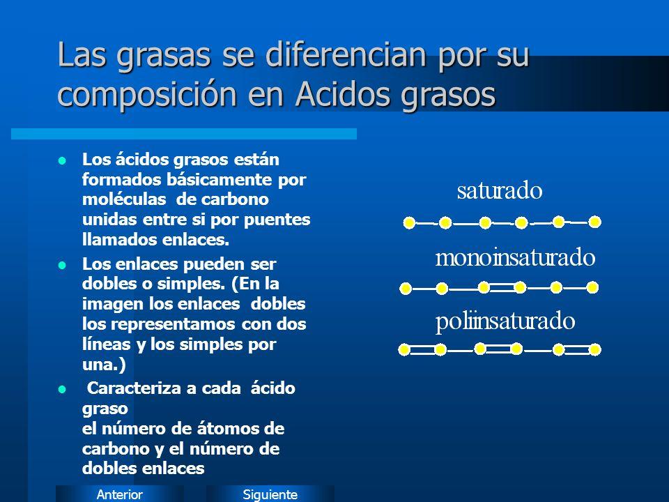 SiguienteAnterior Las grasas se diferencian por su composición en Acidos grasos Los ácidos grasos están formados básicamente por moléculas de carbono unidas entre si por puentes llamados enlaces.