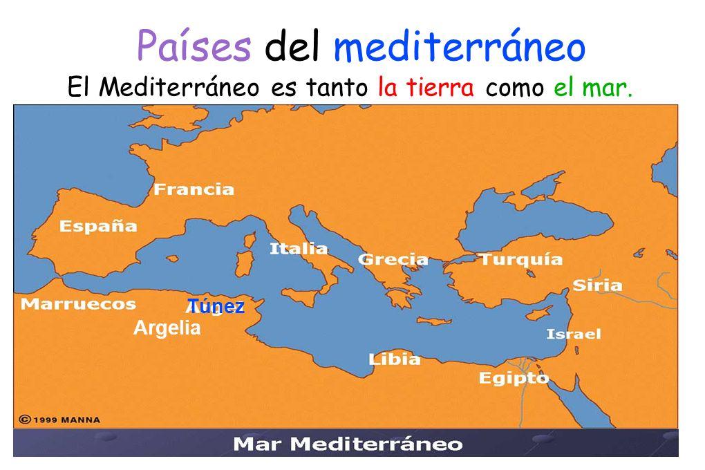 Y se desarrollo la pirámide de la dieta mediterránea