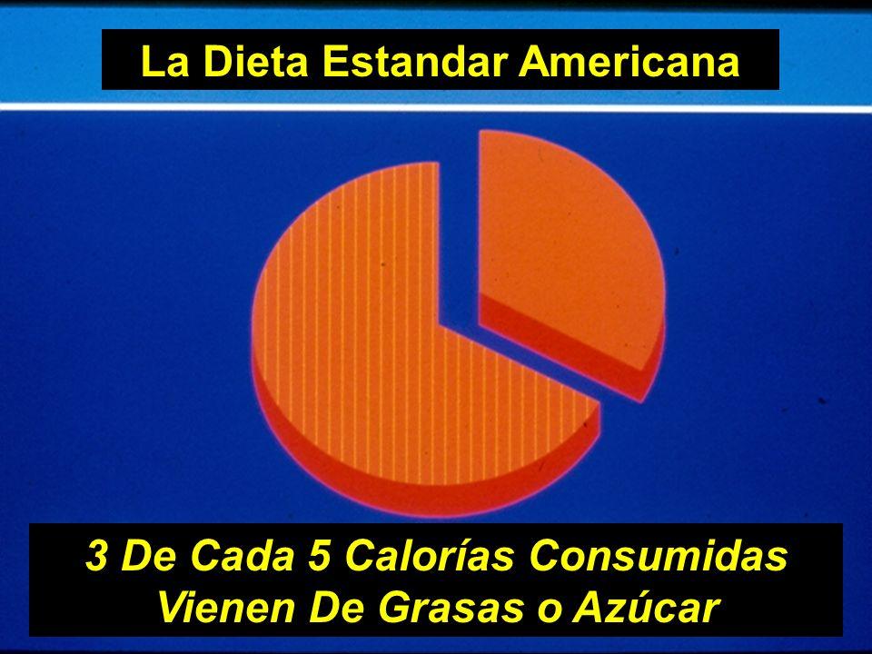 La Dieta Estandar Americana 3 De Cada 5 Calorías Consumidas Vienen De Grasas o Azúcar