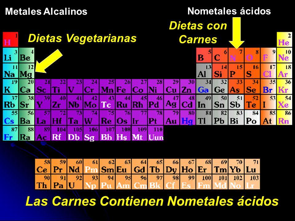 Nometales ácidos Dietas con Carnes Metales Alcalinos Las Carnes Contienen Nometales ácidos Dietas Vegetarianas