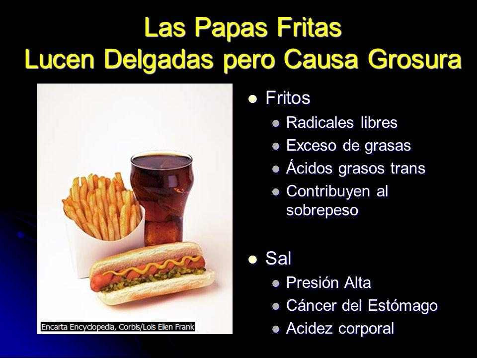 Las Papas Fritas Lucen Delgadas pero Causa Grosura Fritos Fritos Radicales libres Exceso de grasas Ácidos grasos trans Contribuyen al sobrepeso Sal Sa