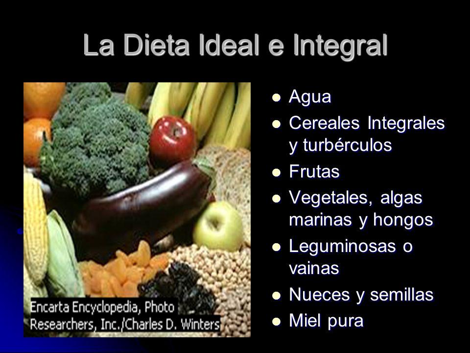 La Dieta Ideal e Integral Agua Agua Cereales Integrales y turbérculos Cereales Integrales y turbérculos Frutas Frutas Vegetales, algas marinas y hongo