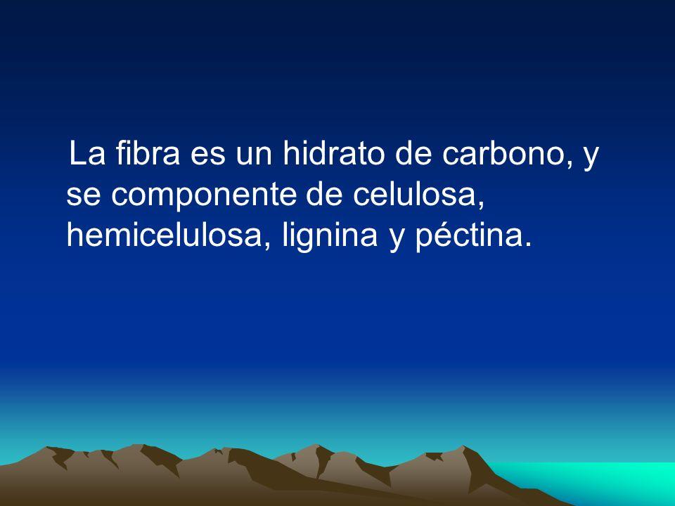 La fibra es un hidrato de carbono, y se componente de celulosa, hemicelulosa, lignina y péctina.
