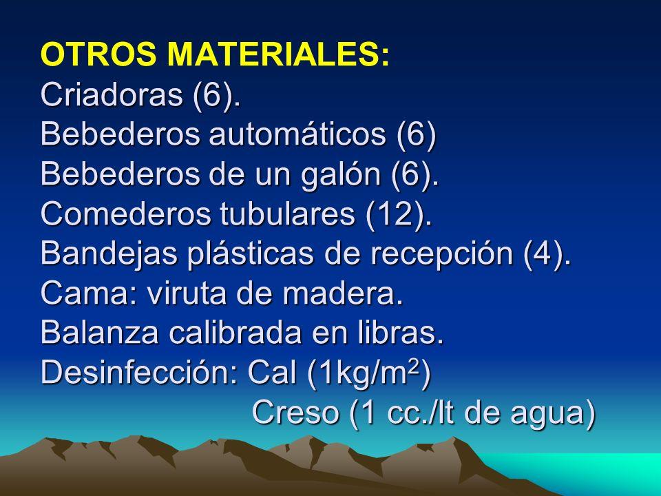 Criadoras (6). Bebederos automáticos (6) Bebederos de un galón (6). Comederos tubulares (12). Bandejas plásticas de recepción (4). Cama: viruta de mad