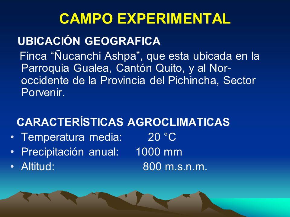 CAMPO EXPERIMENTAL UBICACIÓN GEOGRAFICA Finca Ñucanchi Ashpa, que esta ubicada en la Parroquia Gualea, Cantón Quito, y al Nor- occidente de la Provinc
