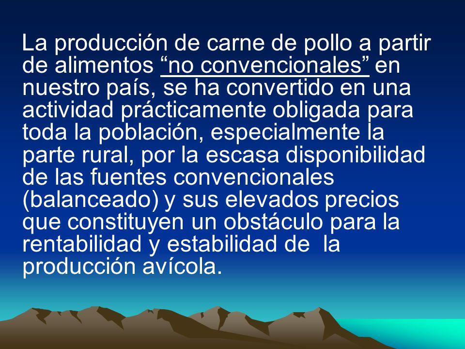 CONSUMO DE ALIMENTO Análisis de variancias del consumo de alimento de pollos broilers en kg bajo el efecto de niveles de sustitución de saccharina en seis semanas de evaluación, Ñucanchi Ashpa, Gualea, Quito, Pichincha 2005.