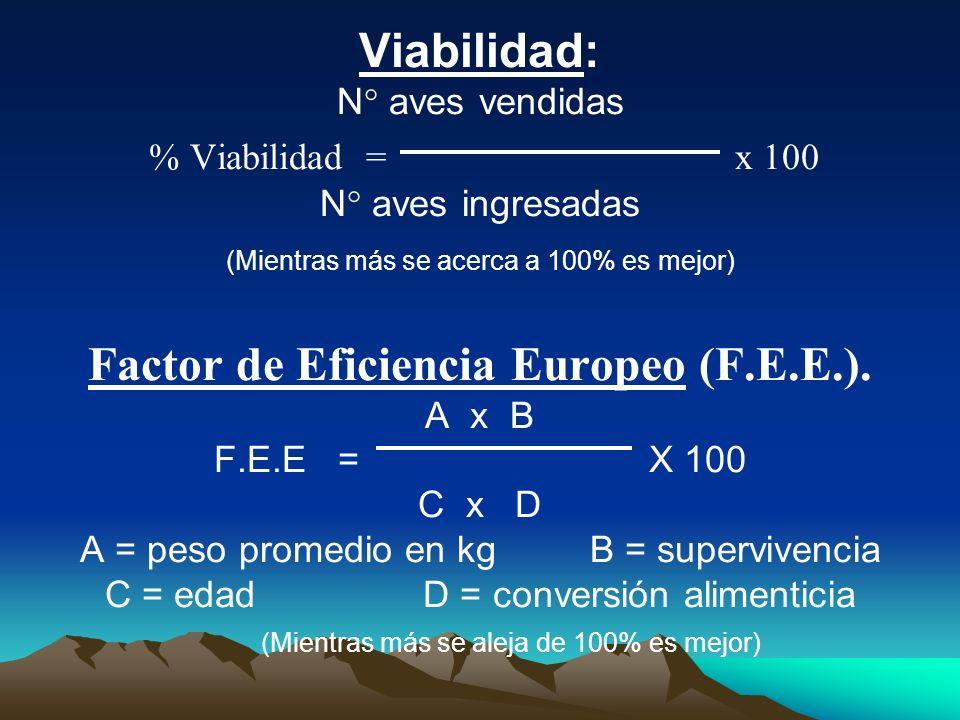 Viabilidad: N° aves vendidas % Viabilidad = x 100 N° aves ingresadas (Mientras más se acerca a 100% es mejor) Factor de Eficiencia Europeo (F.E.E.). A