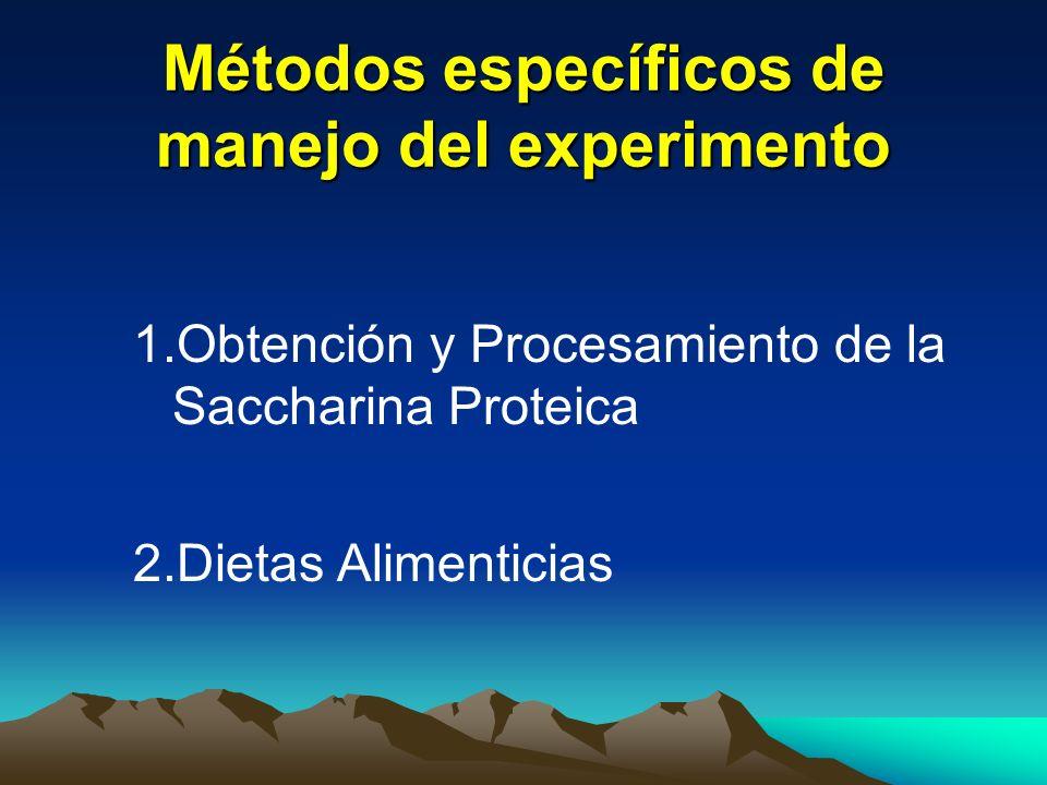 Métodos específicos de manejo del experimento 1.Obtención y Procesamiento de la Saccharina Proteica 2.Dietas Alimenticias