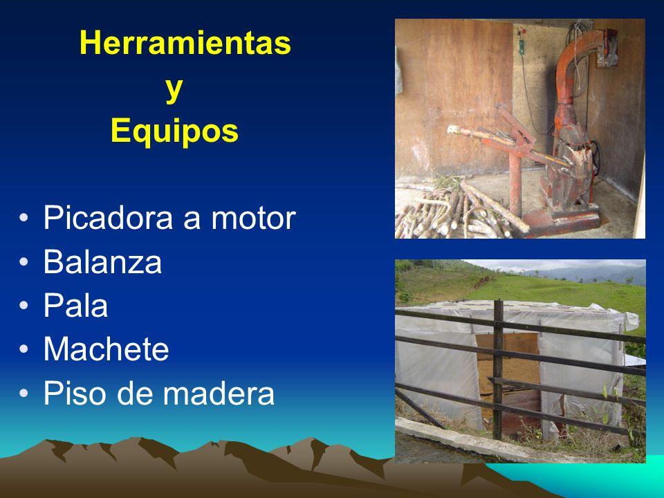 Herramientas y Equipos Picadora a motor Balanza Pala Machete Piso de madera