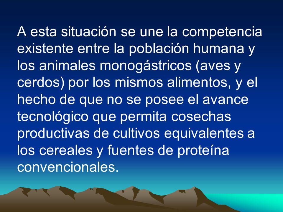 A esta situación se une la competencia existente entre la población humana y los animales monogástricos (aves y cerdos) por los mismos alimentos, y el