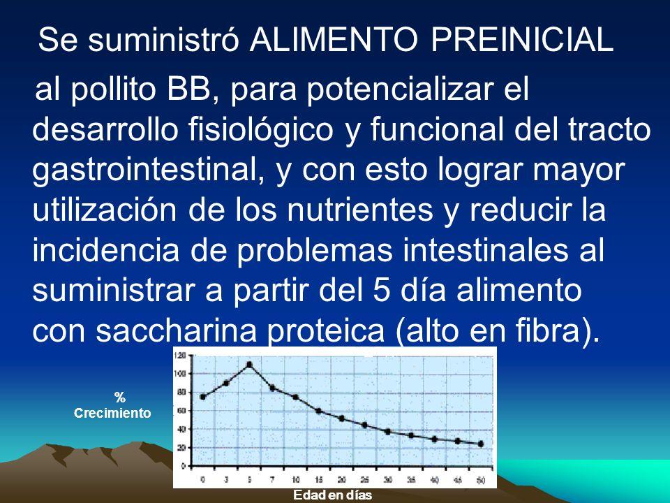 Se suministró ALIMENTO PREINICIAL al pollito BB, para potencializar el desarrollo fisiológico y funcional del tracto gastrointestinal, y con esto logr