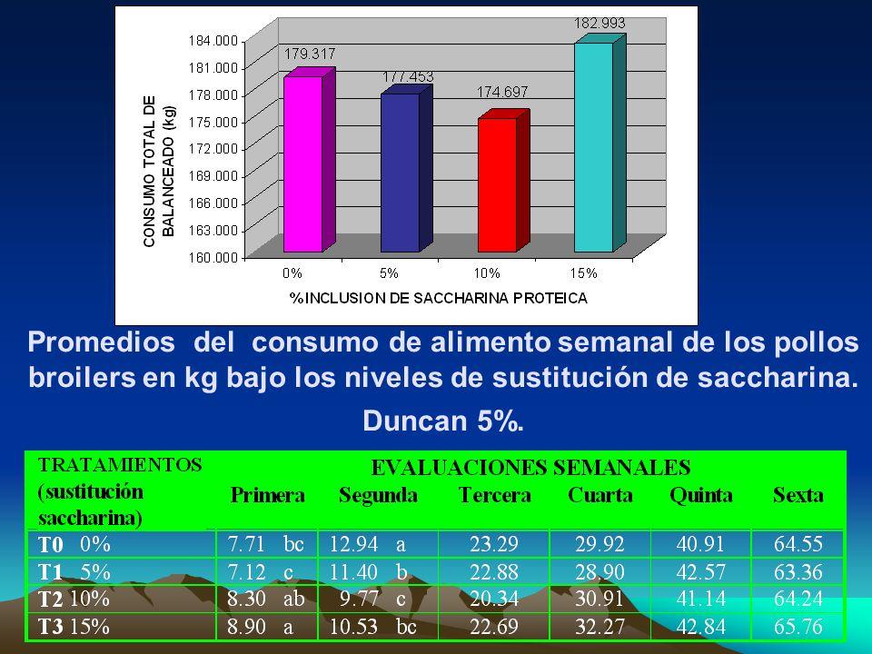 Promedios del consumo de alimento semanal de los pollos broilers en kg bajo los niveles de sustitución de saccharina. Duncan 5%.