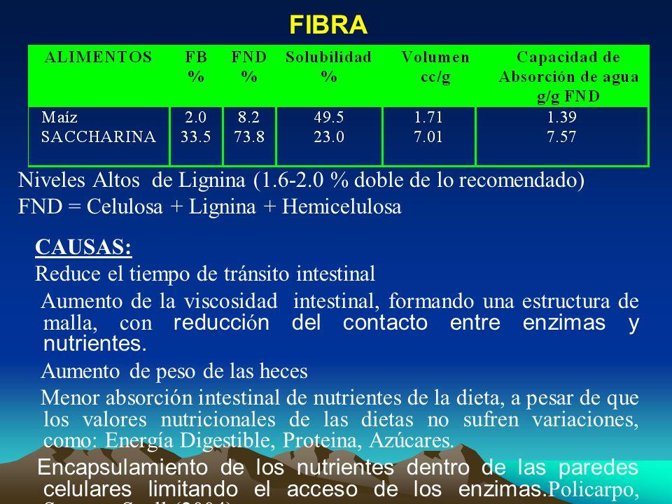 FIBRA Niveles Altos de Lignina (1.6-2.0 % doble de lo recomendado) FND = Celulosa + Lignina + Hemicelulosa CAUSAS: Reduce el tiempo de tránsito intest