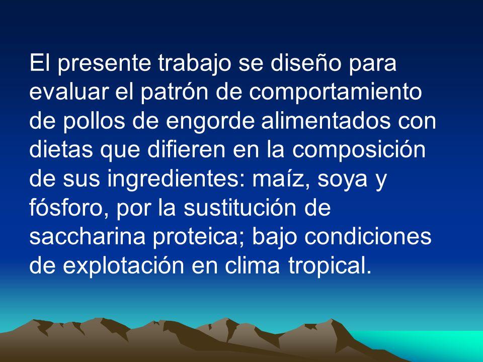 DIETAS ALIMENTICIAS El alimento se elaboró en el Molino Prodemsa en Quito; y la saccharina proteica se proceso en la finca Ñucanchi Ashpa.