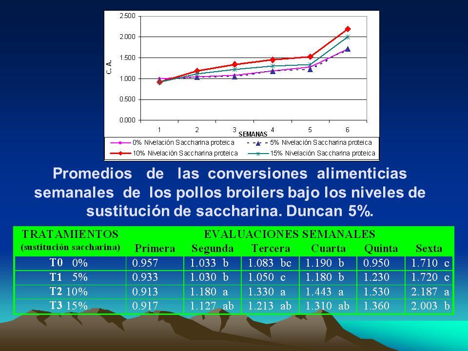 Promedios de las conversiones alimenticias semanales de los pollos broilers bajo los niveles de sustitución de saccharina. Duncan 5%.