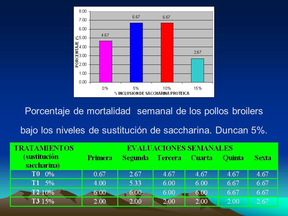 Porcentaje de mortalidad semanal de los pollos broilers bajo los niveles de sustitución de saccharina. Duncan 5%.