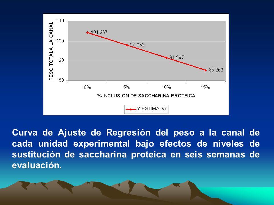 Curva de Ajuste de Regresión del peso a la canal de cada unidad experimental bajo efectos de niveles de sustitución de saccharina proteica en seis sem