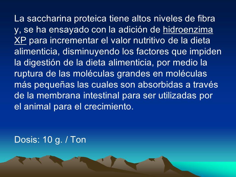 La saccharina proteica tiene altos niveles de fibra y, se ha ensayado con la adición de hidroenzima XP para incrementar el valor nutritivo de la dieta