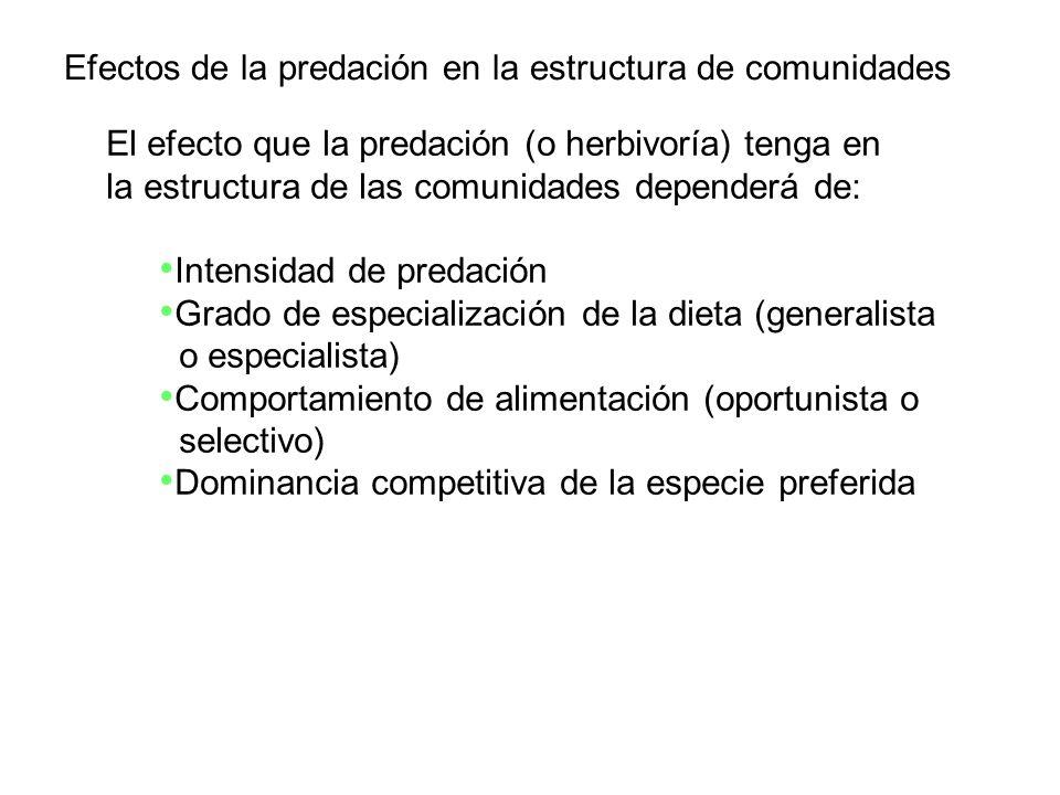 El efecto que la predación (o herbivoría) tenga en la estructura de las comunidades dependerá de: Intensidad de predación Grado de especialización de