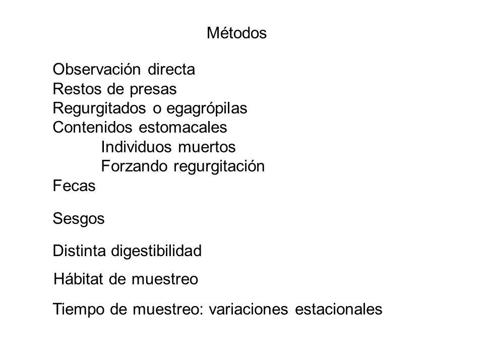 Métodos Observación directa Restos de presas Regurgitados o egagrópilas Contenidos estomacales Individuos muertos Forzando regurgitación Fecas Sesgos