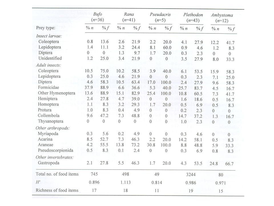 Preferencias alimentarias Relación entre consumo y disponibilidad Varios índices: Krebs, Ecological Methodology Para fotocopiar Ejemplo Selección de la presa por la lechuza del campanario por tamaño de roedor.
