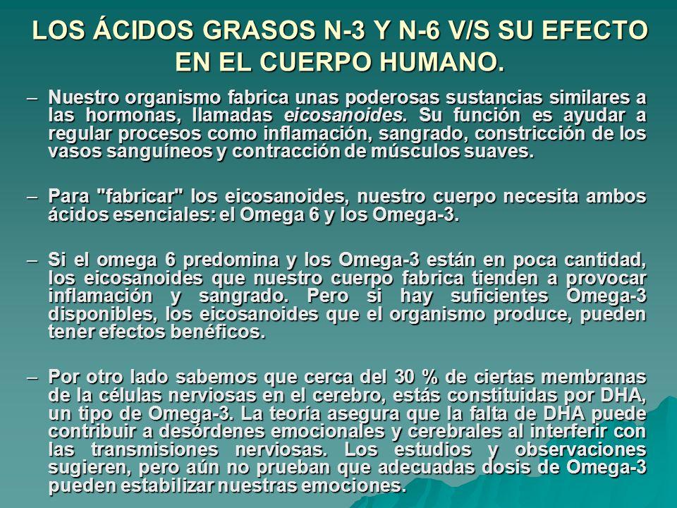 LOS ÁCIDOS GRASOS N-3 Y N-6 V/S SU EFECTO EN EL CUERPO HUMANO. –Nuestro organismo fabrica unas poderosas sustancias similares a las hormonas, llamadas