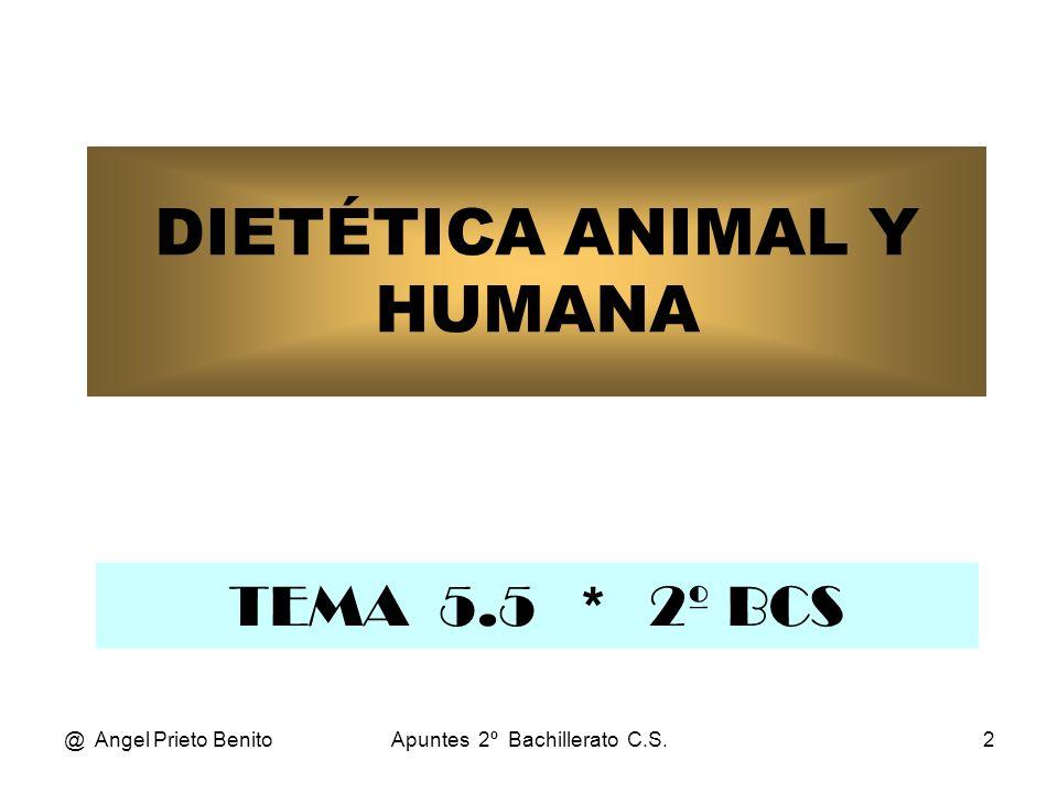 @ Angel Prieto BenitoApuntes 2º Bachillerato C.S.2 DIETÉTICA ANIMAL Y HUMANA TEMA 5.5 * 2º BCS