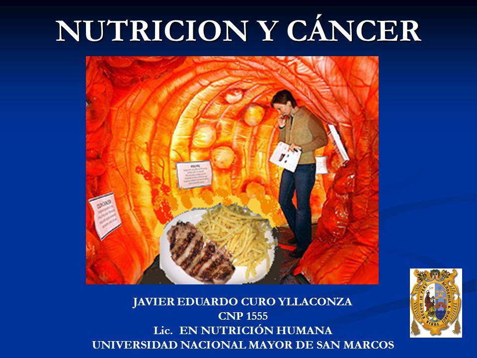 NUTRICION Y CÁNCER JAVIER EDUARDO CURO YLLACONZA CNP 1555 Lic.