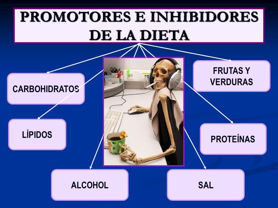 PROMOTORES E INICIADORES DE TUMORES MAS CONOCIDOS EN LA DIETA: INICIADORES DE TUMORES: Nitrosamina.