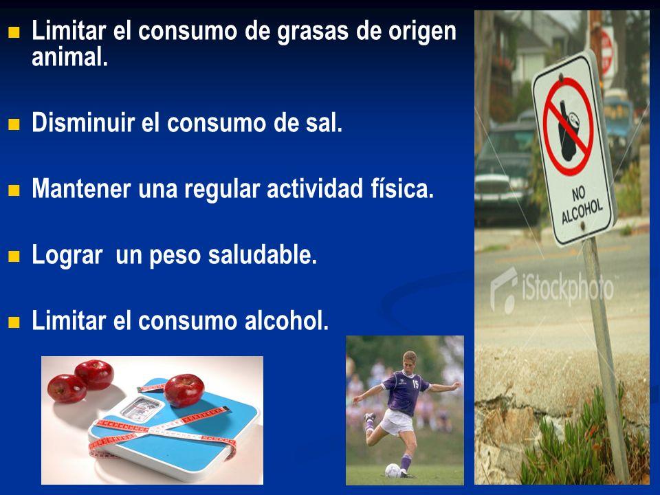 Limitar el consumo de grasas de origen animal. Disminuir el consumo de sal. Mantener una regular actividad física. Lograr un peso saludable. Limitar e