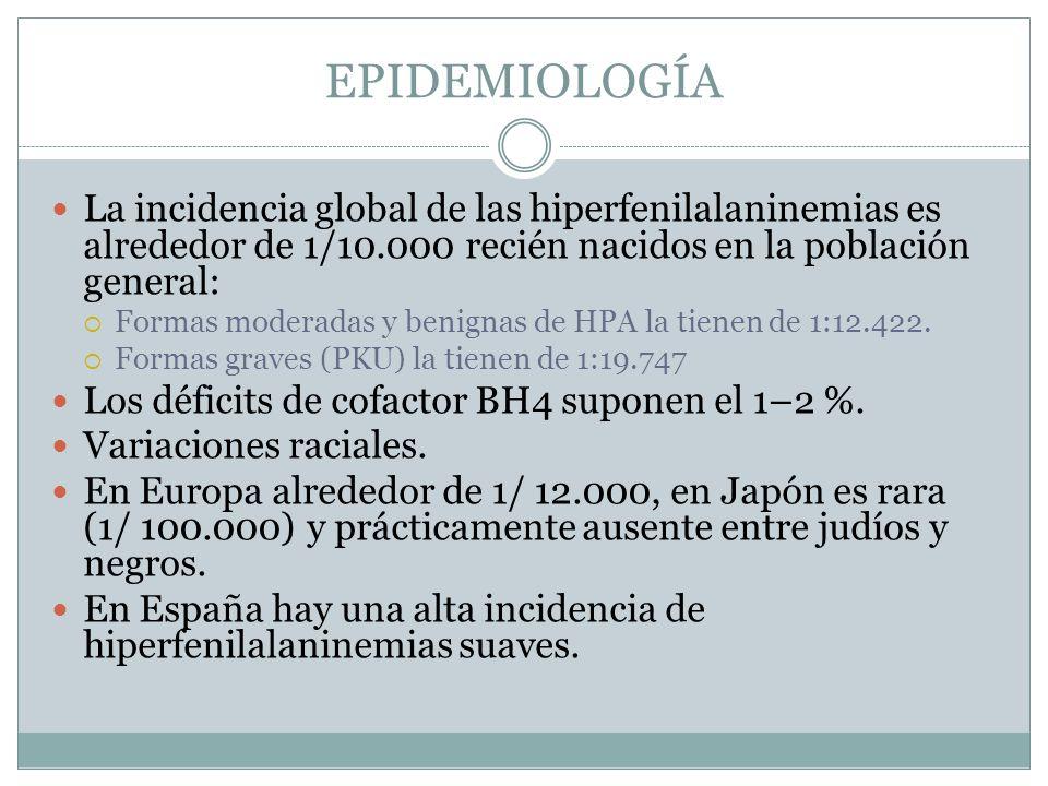 EPIDEMIOLOGÍA La incidencia global de las hiperfenilalaninemias es alrededor de 1/10.000 recién nacidos en la población general: Formas moderadas y benignas de HPA la tienen de 1:12.422.
