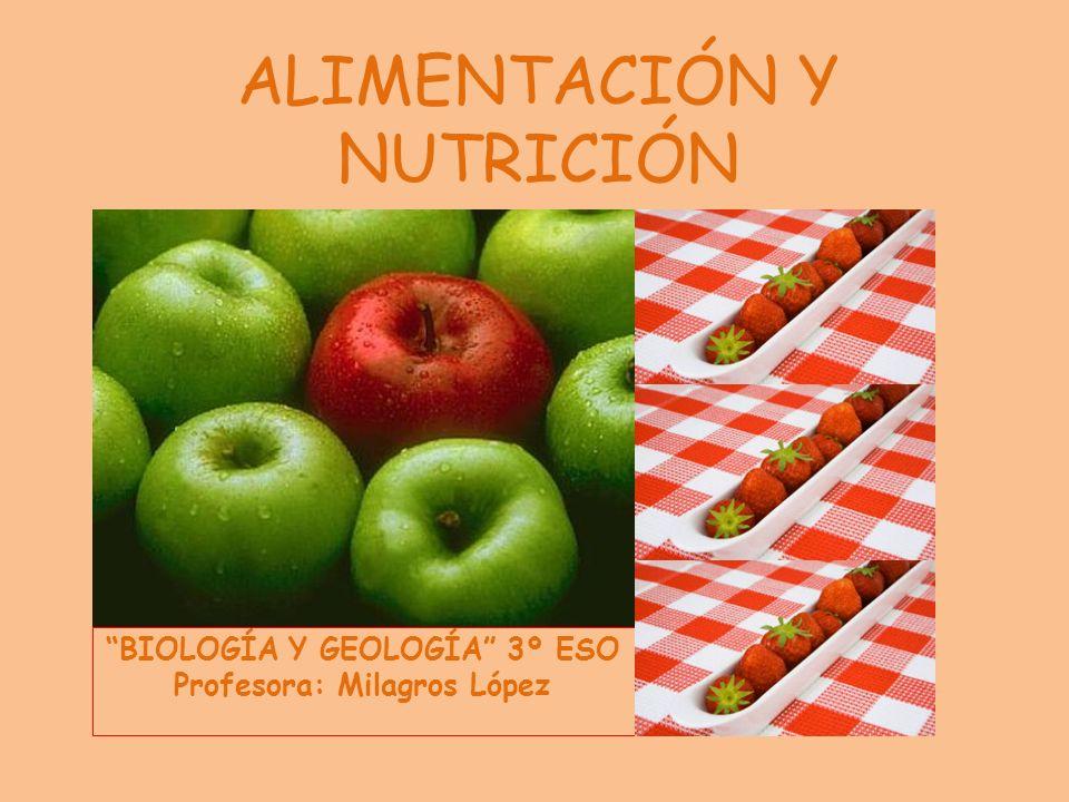 ALIMENTACIÓN Y NUTRICIÓN BIOLOGÍA Y GEOLOGÍA 3º ESO Profesora: Milagros López