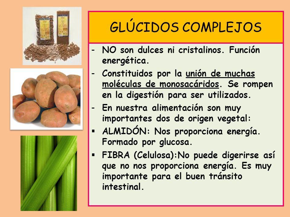 GLÚCIDOS COMPLEJOS -NO son dulces ni cristalinos. Función energética.