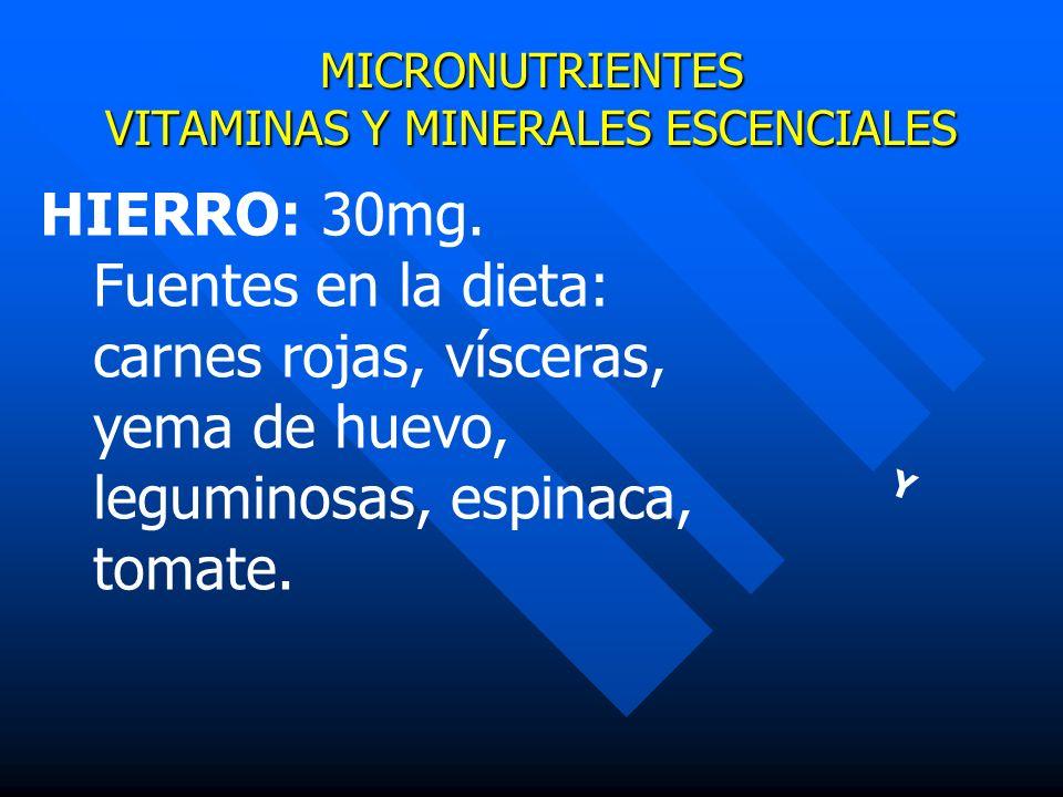 MICRONUTRIENTES VITAMINAS Y MINERALES ESCENCIALES Y HIERRO: 30mg. Fuentes en la dieta: carnes rojas, vísceras, yema de huevo, leguminosas, espinaca, t