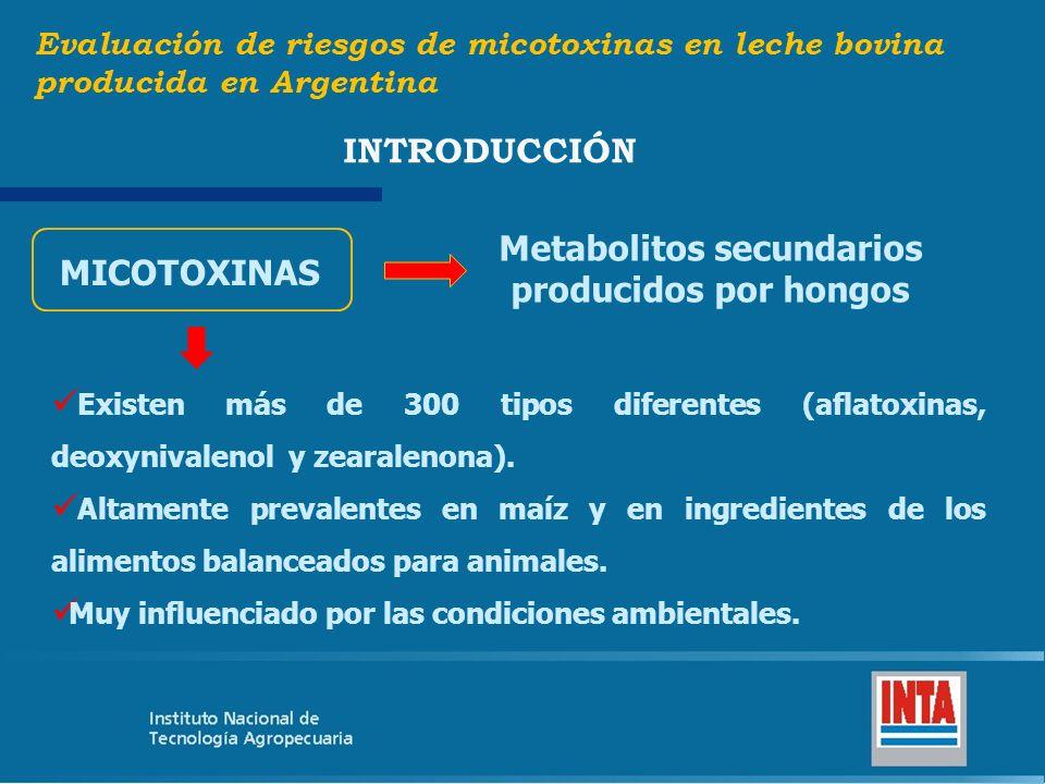 Metabolitos secundarios producidos por hongos Existen más de 300 tipos diferentes (aflatoxinas, deoxynivalenol y zearalenona). Altamente prevalentes e