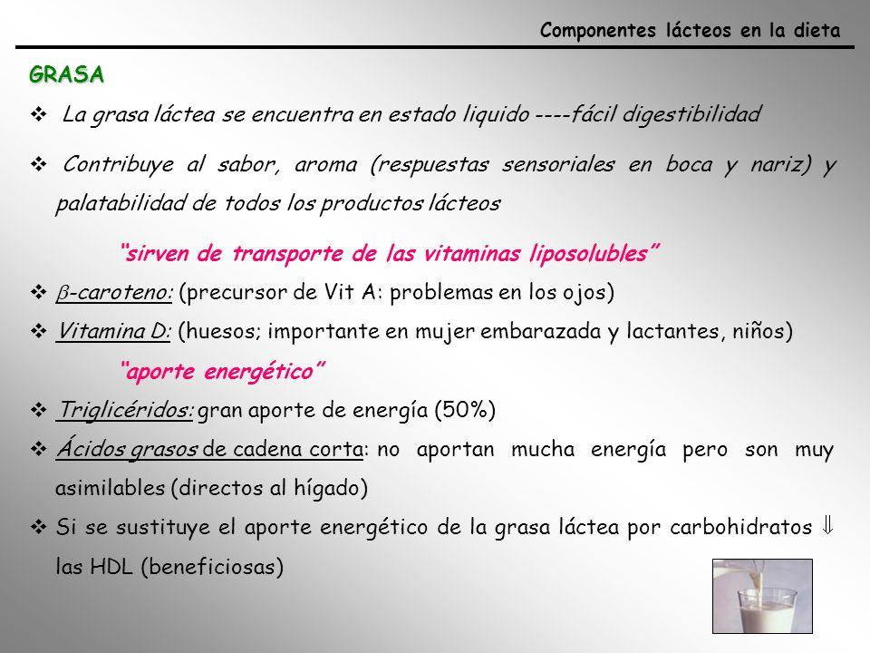 Componentes minoritarios - fosfolípidos (membrana): emulsionantes (favorecen absorción intestinal de lípidos, forman capa protectora sobre la mucosa gastrica y mejoran biodisponibilidad de compuestos liposolubles) - esfingomielinas: anticancerígenos, anticolesterolémico Ácidos grasos - Fuente de AG esenciales: (linoleico, linolénico) - ácido oleico (C18:1) y ácido esteárico (C18:0) hace fácil la digestibilidad - AG de cadena corta y media (C4, C6, C8 y C10), á.