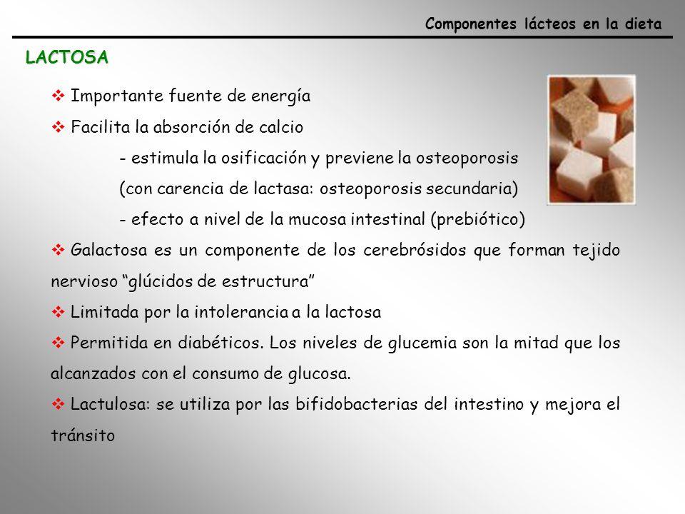 PROTEÍNAS - Componente de la leche con mayor valor nutritivo - Importante fuente de nitrógeno (síntesis de proteínas y otros compuestos nitrogenados) - Contiene todos los aminoácidos esenciales para el adulto - CN y PS se complementan en cuanto al contenido en aa esenciales (PS: aa sulfurados, Met y Cys) - Incluyen Ca y P en su estructura y todo el Fe, Mn, Zn.