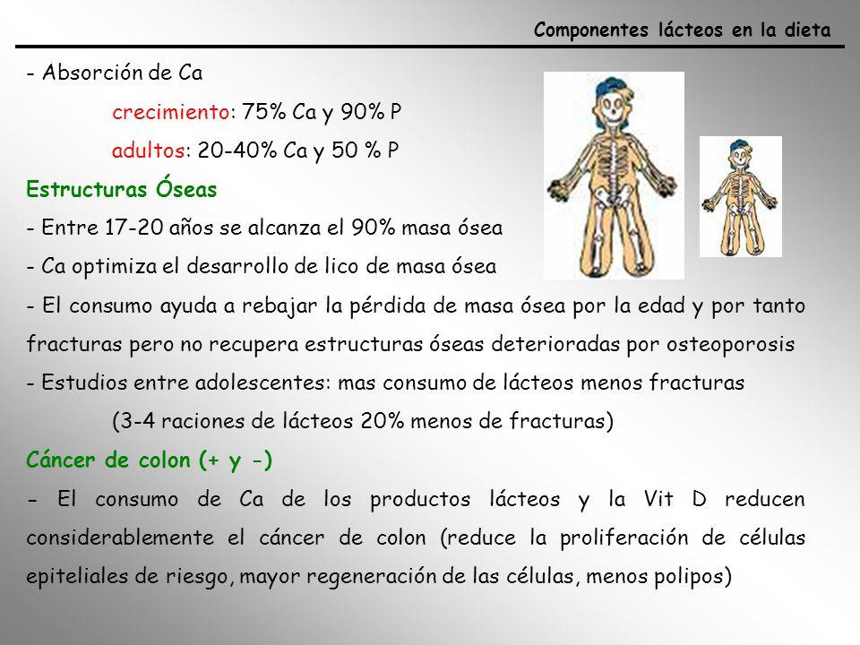 - Absorción de Ca crecimiento: 75% Ca y 90% P adultos: 20-40% Ca y 50 % P Estructuras Óseas - Entre 17-20 años se alcanza el 90% masa ósea - Ca optimi