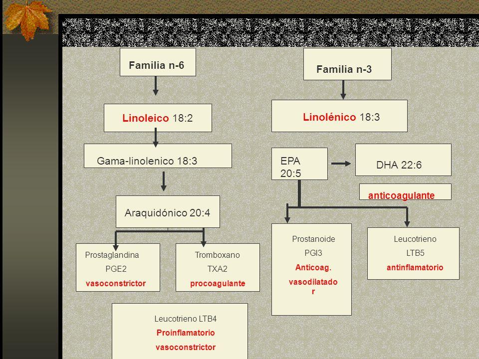 Familia n-6 Familia n-3 Linoleico 18:2 Linolénico 18:3 Gama-linolenico 18:3EPA 20:5 DHA 22:6 anticoagulante Araquidónico 20:4 Prostaglandina PGE2 vaso