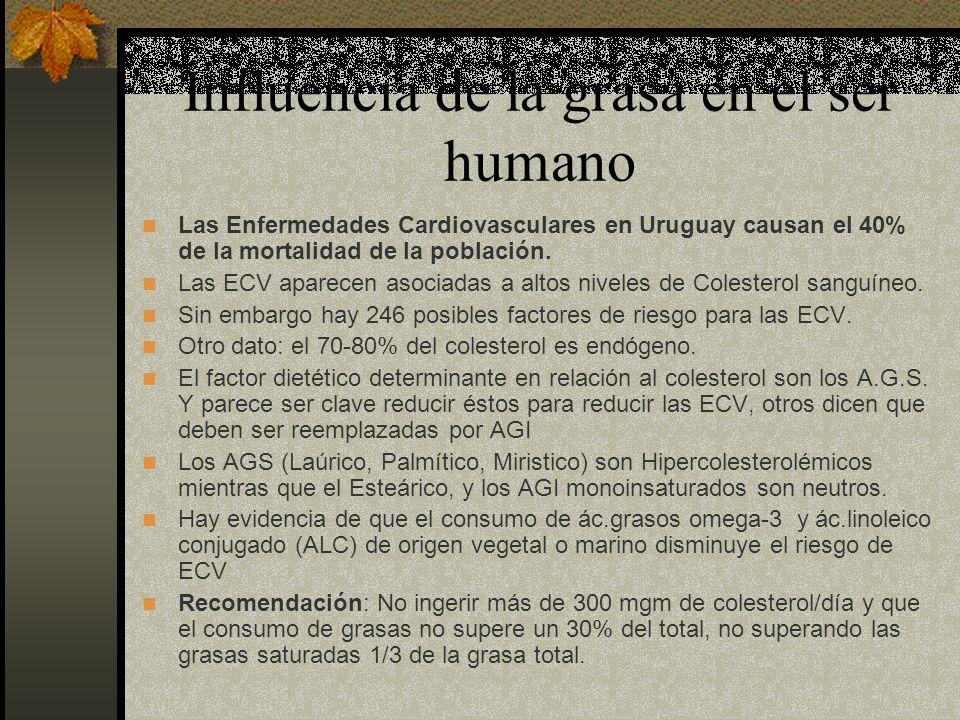 Influencia de la grasa en el ser humano Las Enfermedades Cardiovasculares en Uruguay causan el 40% de la mortalidad de la población. Las ECV aparecen