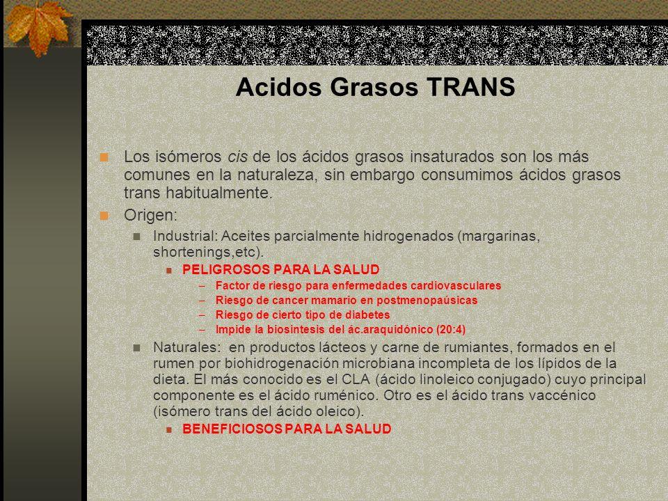 Acidos Grasos TRANS Los isómeros cis de los ácidos grasos insaturados son los más comunes en la naturaleza, sin embargo consumimos ácidos grasos trans