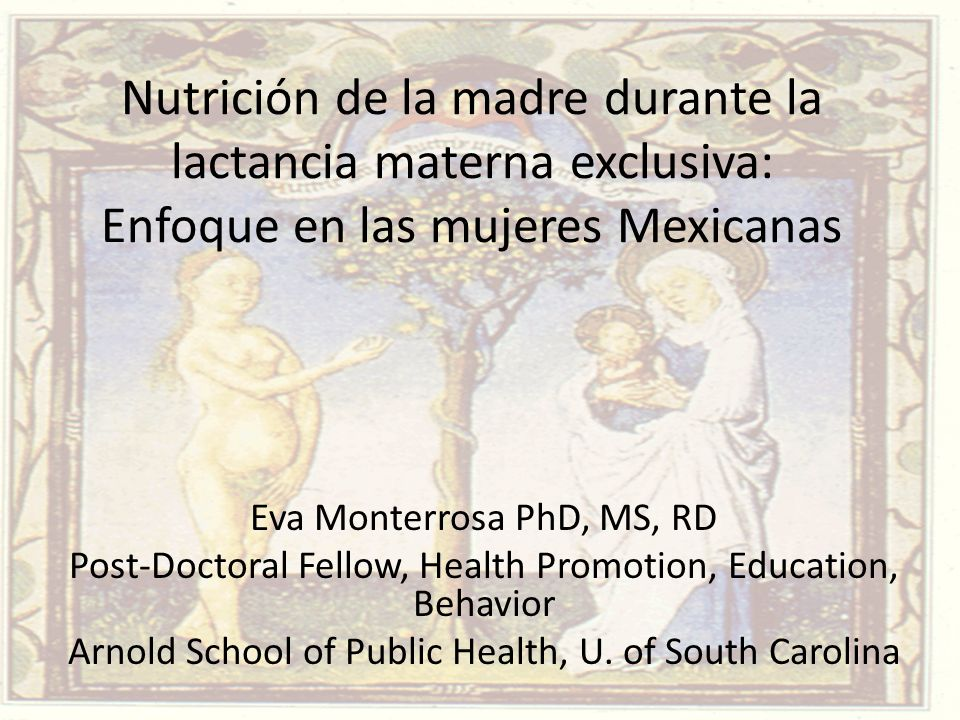 Nutrición de la madre durante la lactancia materna exclusiva: Enfoque en las mujeres Mexicanas Eva Monterrosa PhD, MS, RD Post-Doctoral Fellow, Health